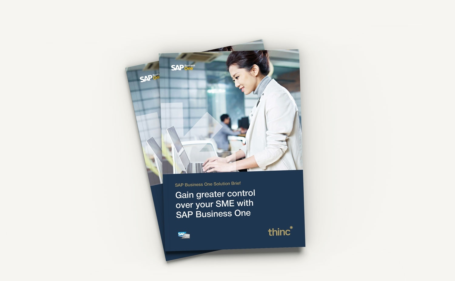 SAP Business One Guide